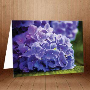 کارت پستال طبیعت کد 3768