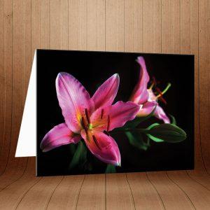 کارت پستال طبیعت کد 3771