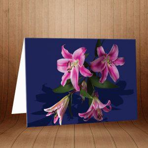 کارت پستال طبیعت کد 3776