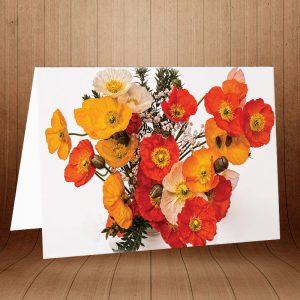 کارت پستال طبیعت کد 3779