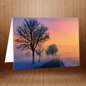 خرید کارت پستال طبیعت