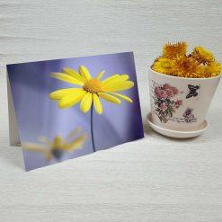 کارت پستال طبیعت کد 3795 کلاسیک