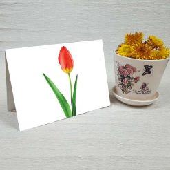 کارت پستال طبیعت کد 3791 کلاسیک