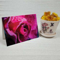 کارت پستال طبیعت کد 3789 کلاسیک