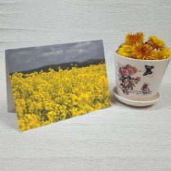 کارت پستال طبیعت کد 3421 کلاسیک