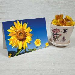 کارت پستال طبیعت کد 3418 کلاسیک
