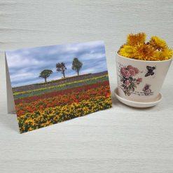کارت پستال طبیعت کد 3415 کلاسیک