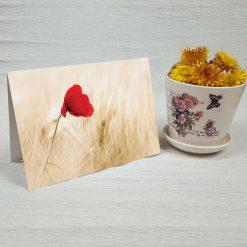 کارت پستال طبیعت کد 3413 کلاسیک