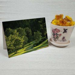 کارت پستال طبیعت کد 3412 کلاسیک