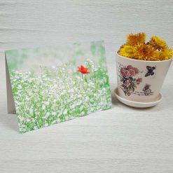 کارت پستال طبیعت کد 3410 کلاسیک