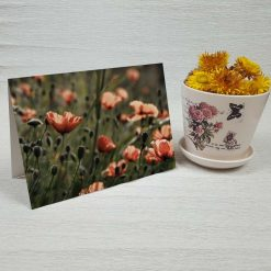 کارت پستال طبیعت کد 3409 کلاسیک