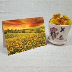 کارت پستال طبیعت کد 3408 کلاسیک