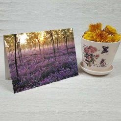 کارت پستال طبیعت کد 3406 کلاسیک