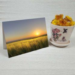 کارت پستال طبیعت کد 3399 کلاسیک