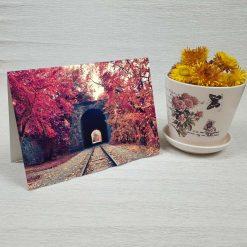 کارت پستال طبیعت کد 3490 کلاسیک
