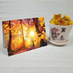 کارت پستال طبیعت کد 3495 کلاسیک