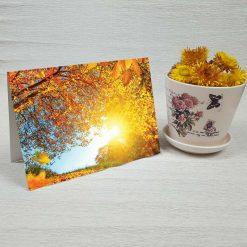 کارت پستال طبیعت کد 3500 کلاسیک