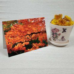 کارت پستال طبیعت کد 3502 کلاسیک