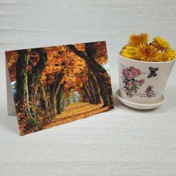 کارت پستال طبیعت کد 3503 کلاسیک