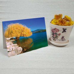 کارت پستال طبیعت کد 3504 کلاسیک