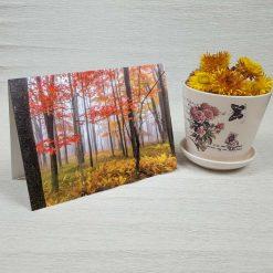 کارت پستال طبیعت کد 3508 کلاسیک