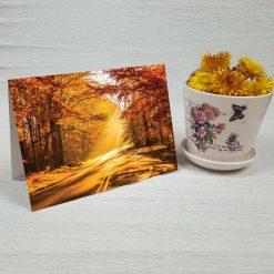 کارت پستال طبیعت کد 3509 کلاسیک