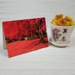 کارت پستال طبیعت کد 3516 کلاسیک