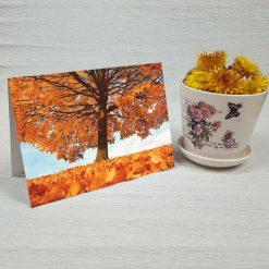 کارت پستال طبیعت کد 3518 کلاسیک