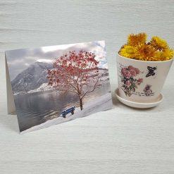 کارت پستال طبیعت کد 4330 کلاسیک