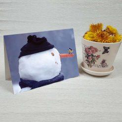 کارت پستال طبیعت کد 4334 کلاسیک