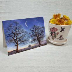 کارت پستال طبیعت کد 4342 کلاسیک