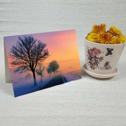 کارت پستال طبیعت کد 4348 کلاسیک