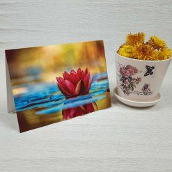کارت پستال طبیعت کد 4714 کلاسیک