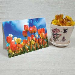 کارت پستال طبیعت کد 4713 کلاسیک