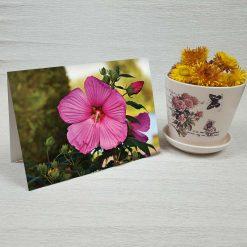 کارت پستال طبیعت کد 4707 کلاسیک