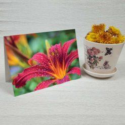 کارت پستال طبیعت کد 4703 کلاسیک