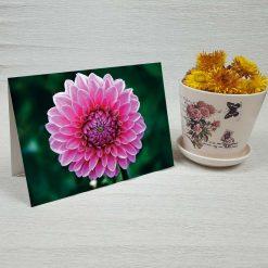 کارت پستال طبیعت کد 4688 کلاسیک