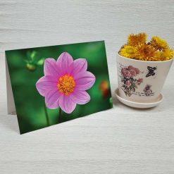 کارت پستال طبیعت کد 4687 کلاسیک