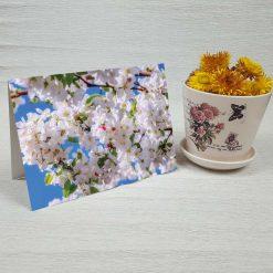 کارت پستال طبیعت کد 3373 کلاسیک