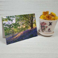 کارت پستال طبیعت کد 3376 کلاسیک