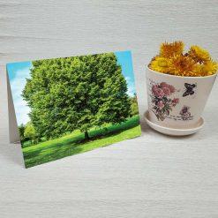 کارت پستال طبیعت کد 3377 کلاسیک