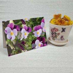 کارت پستال طبیعت کد 3378 کلاسیک