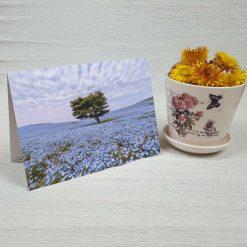 کارت پستال طبیعت کد 3381 کلاسیک