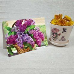 کارت پستال طبیعت کد 3383 کلاسیک