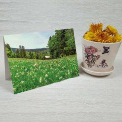 کارت پستال طبیعت کد 3389 کلاسیک