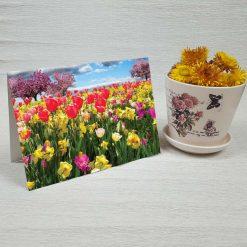 کارت پستال طبیعت کد 3390 کلاسیک
