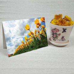 کارت پستال طبیعت کد 3392 کلاسیک
