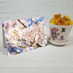 کارت پستال طبیعت کد 3394 کلاسیک