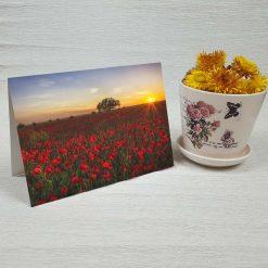 کارت پستال طبیعت کد 3398 کلاسیک